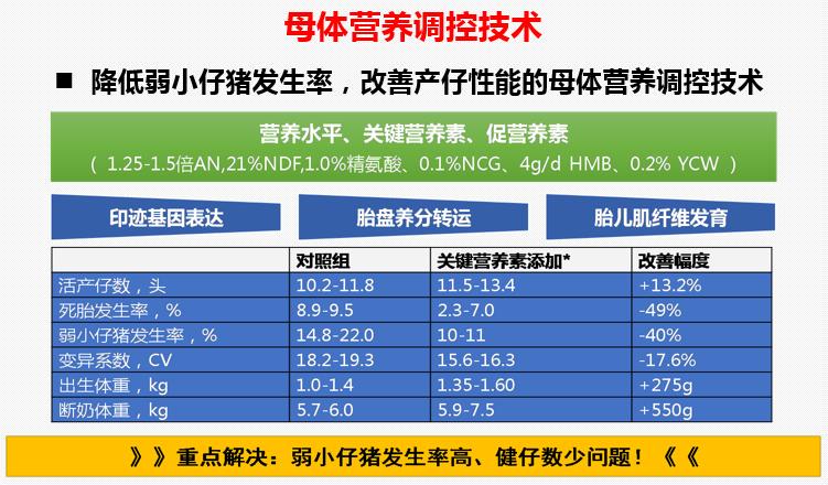 车炼强教授:出生体重、产程、初乳摄入量三大因素影响仔猪死亡率!!