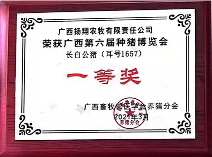 """""""冠军""""猪,扬翔""""造""""!"""